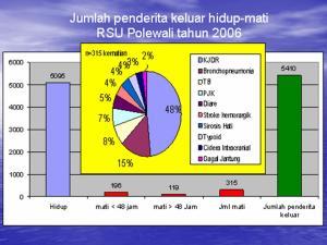 Jumlah keluar hidup mati pasien Di RSUD Polewali Mandar Tahun 2006