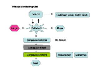Monitoring Gizi